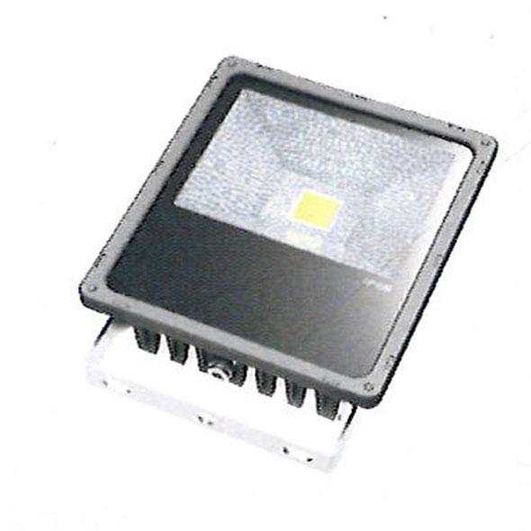 Flood Lights 30w Premium